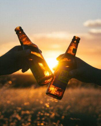 Alle alkoholfri øl